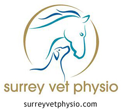 surrey vet physio sponsor Kate Tarrant Eventing